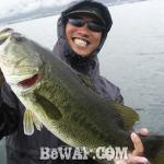 琵琶湖バスフィッシングガイドリポート ~柳様~ 56cm