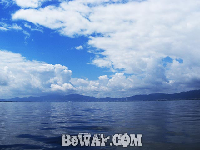 8月 琵琶湖 パンチング釣果写真