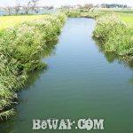 琵琶湖へ (9月26日) 平湖でおかっぱり
