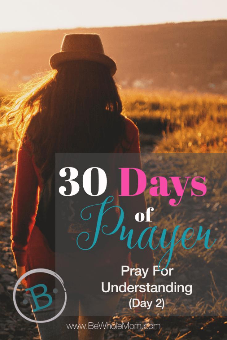 30 Days of Prayer Pray for Understanding