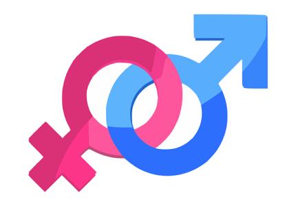 gender-312411__480