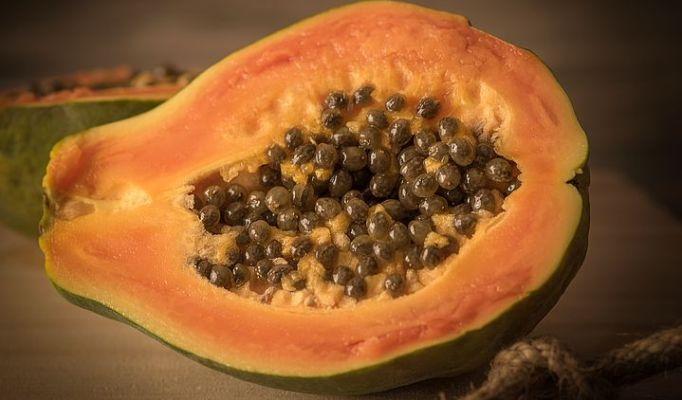 papaya-1263062__480