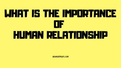 Photo of What Is The Importance Of Human Relationship?