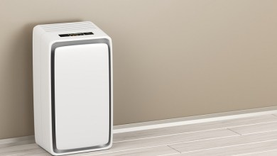Photo of HEPA and Carbon Filters: Two Important Features of Air Purifiers for Mold