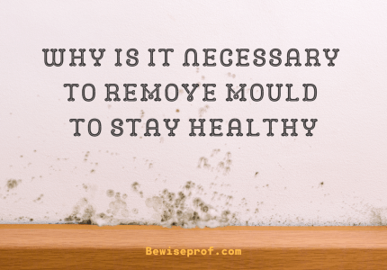 Why Is It Necessary To Remove Mould To Stay Healthy