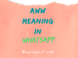 Aww Meaning In Whatsapp