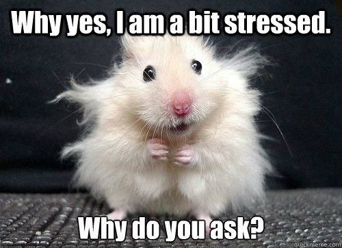 Stress en Swedana