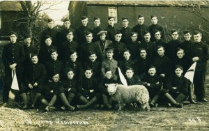 11th Battalion with Peter the sheep. Image courtesy of Paul Reed, Great War Images.