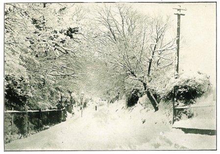Chantry Lane - Xmas - 1910