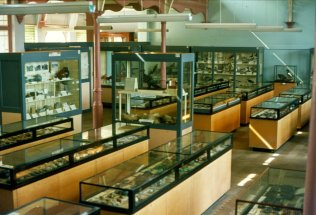 MUS-017 - Bexhill Museum c1975