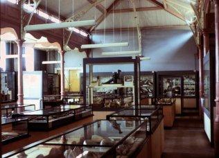 MUS-015 - Museum old gallery c1970