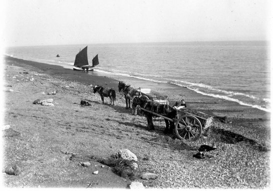 BBE-017 - Bexhill beach, gathering shingle c1890
