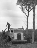 HO-019 - Bowles timber lorry CDY 38