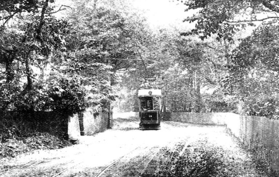 13 on circular route in tree lined road nr junction 1905