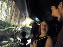 OMG at the Aquarium (2)