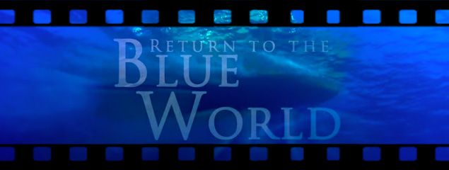 Return to the Blue World