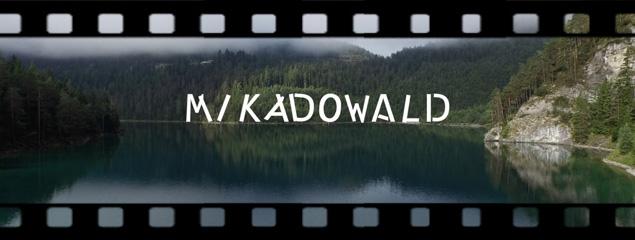 Der Mikadowald im Blindsee, Tauchen in Tirol im Sommer 2015