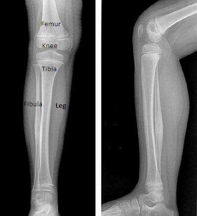 radiology-photos1