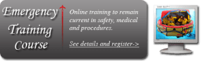 emergency training corporate flight attendants online