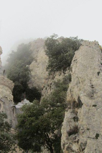 SANT01-Queralt 5 (Jordi Moré)