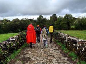 Camino Rain