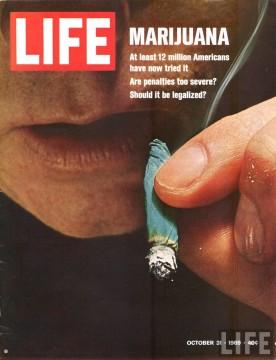 marijuana-life-cover