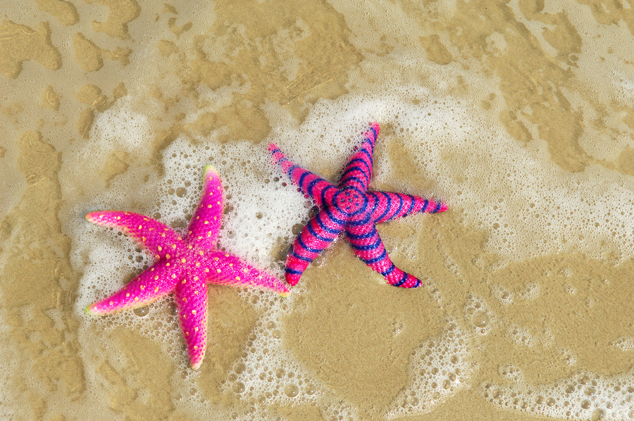 bigstock-starfish-6868305.jpg?fit=900%2C598&ssl=1