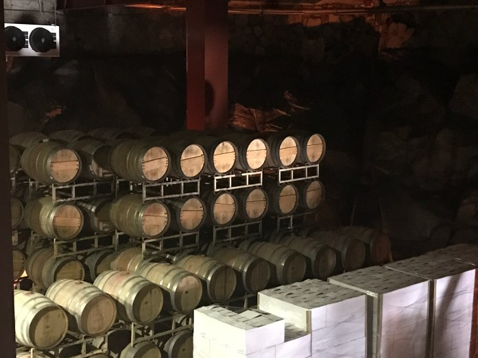 wine tasting mexico
