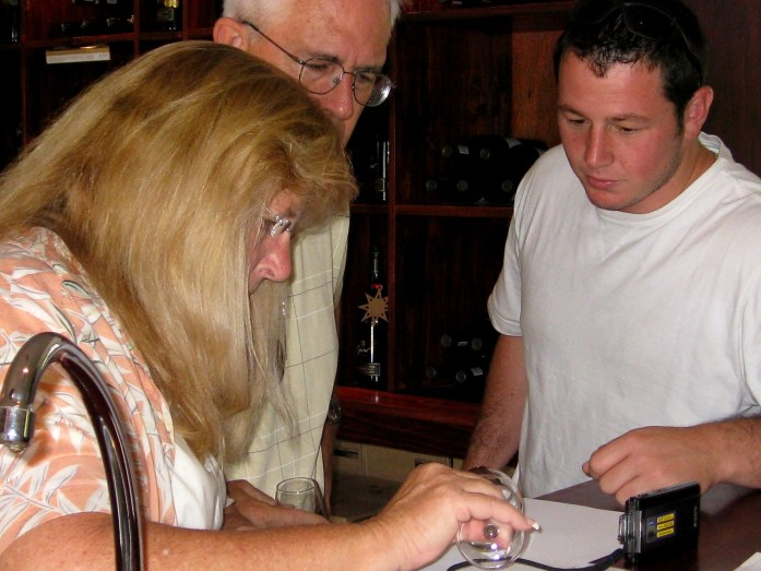 wine tasting south africa