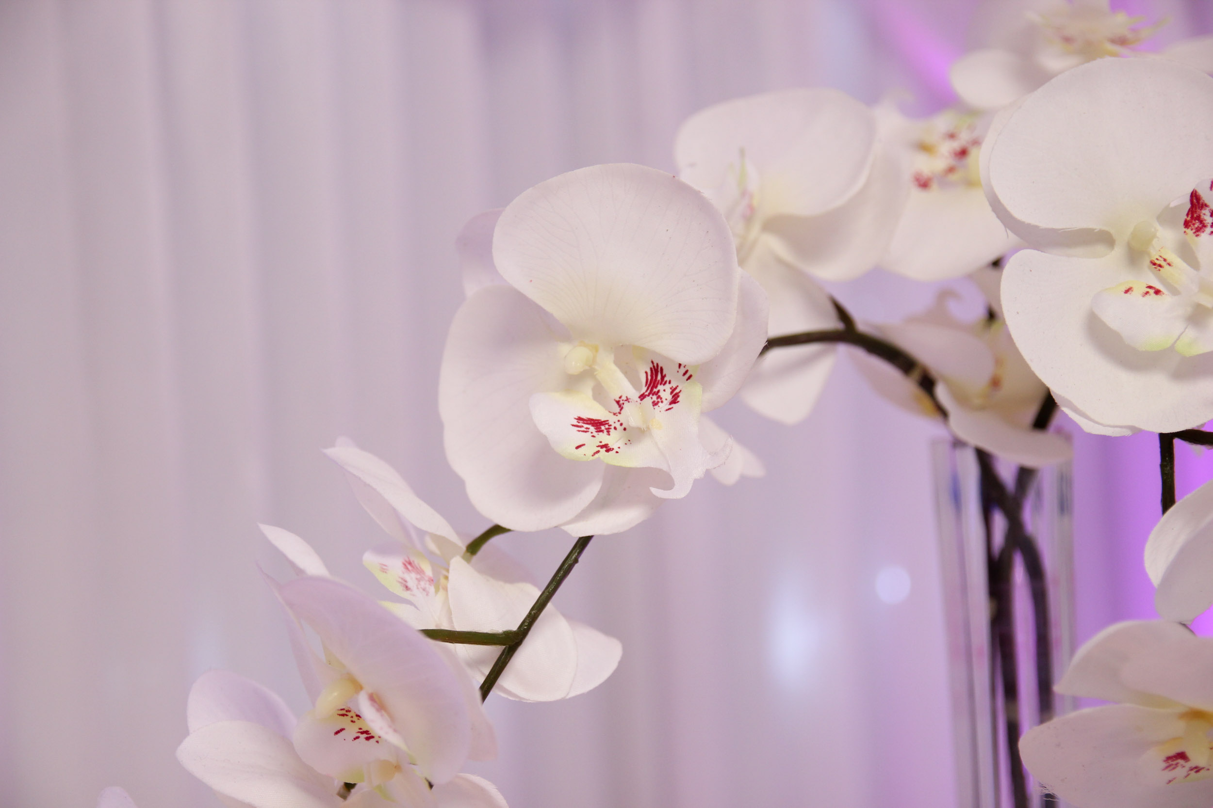 Silk Orchid Centrepiece Beyond Expectations Weddings