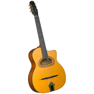 Gypsy, Tenor, Youth and specialty guitars