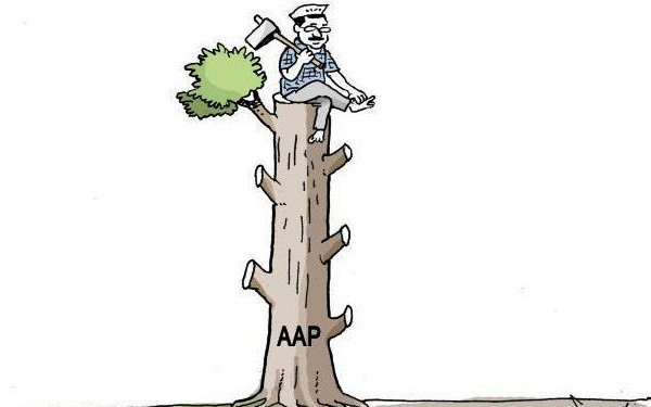 Ak Cuts branches