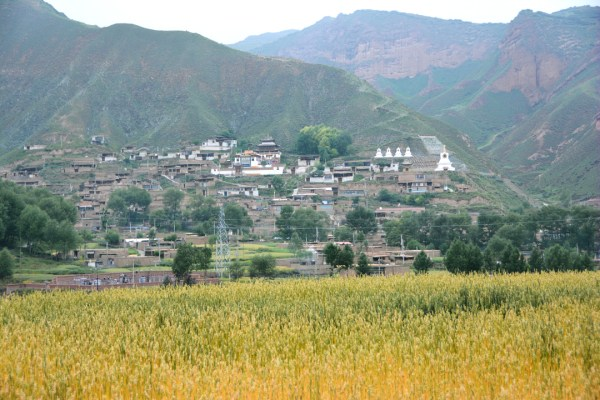 Dowa, a Tibetan village, facing the public road.