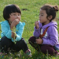 Family Life: A Day on the Grassland