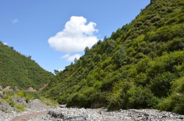 Panchen-Home-Xunha20140812_3568