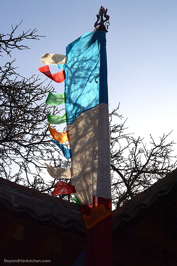 wind horse, tibetan prayer