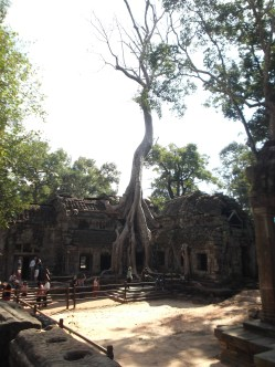 11. Ta Prohm – the jungle is encroaching upon this 1186 temple and enormous trees grow through crumbling and moss-covered walls. Fun fact, Angelina Jolie encroached upon this 1186 temple in 2000 to film Lara Croft: Tomb Raider.