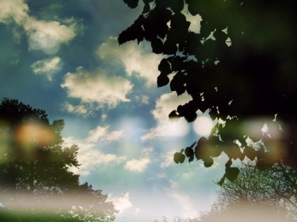 From a park bench 8