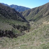 Trail Canyon 004
