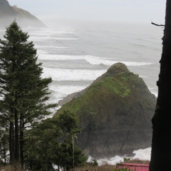 Heceta Head Trail 009