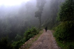 Walking to Naddi, the village beyond the mist