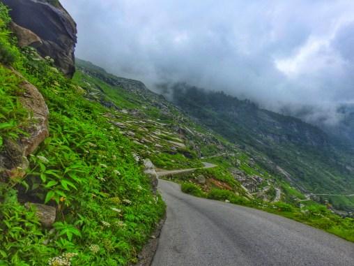 Road we left behind
