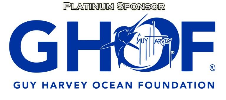 platnium sponsor v2