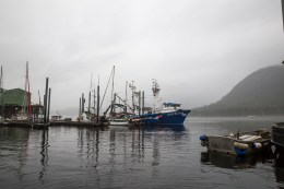 These are serious fishing boats.
