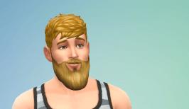 New male hair and beard