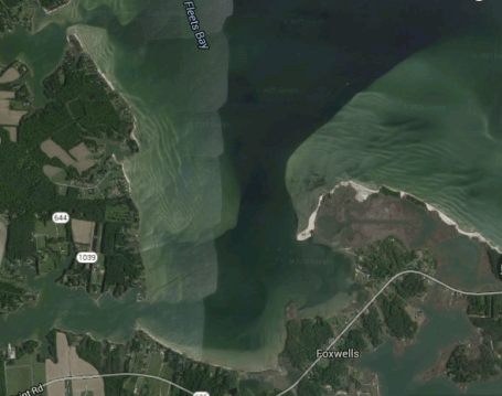 Sampling location: Antipoison Creek