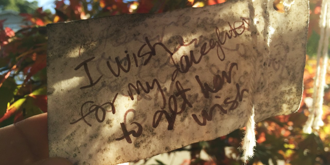 Gratitude-tree : faites un vœu !