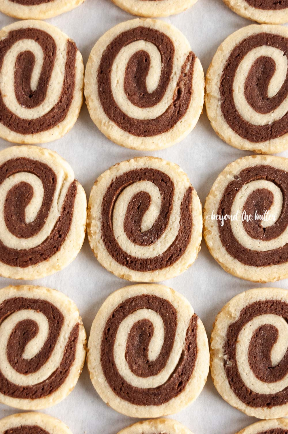 Overhead image of Chocolate Pinwheel Cookies in rows | All images © Beyond the Butter™