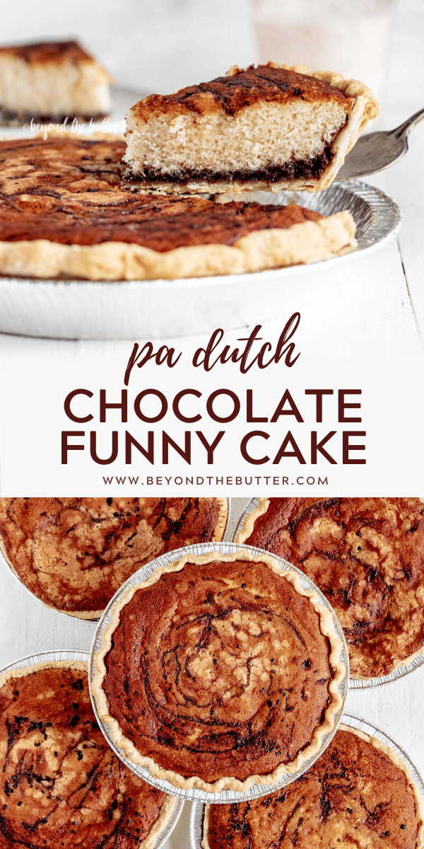 Pinterest image of chocolate funny cake | All Images © Beyond the Butter™