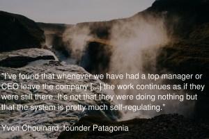 The redundant founder / CEO